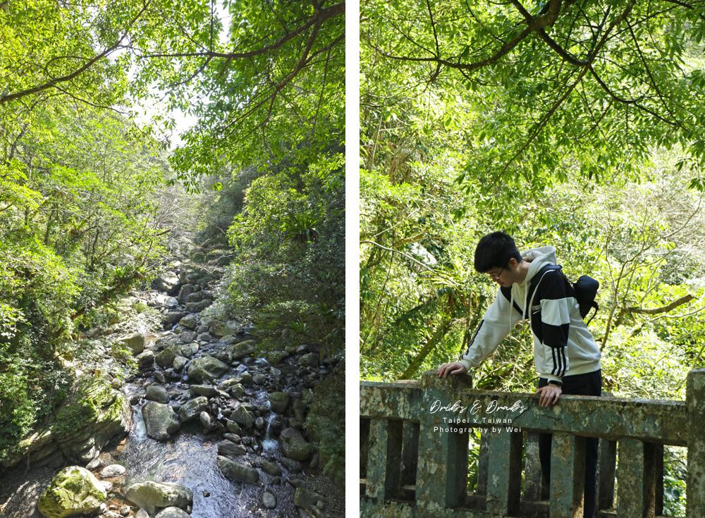新北三峽滿月圓國家森林遊樂區14.jpg