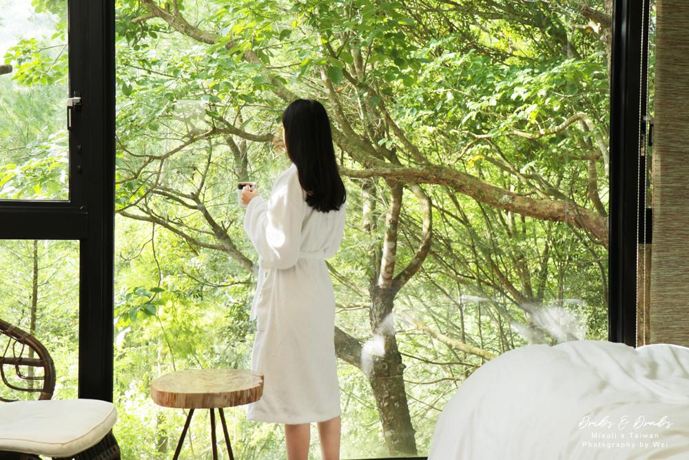 苗栗住宿獨棟Villa八角隱士莊園09.jpg