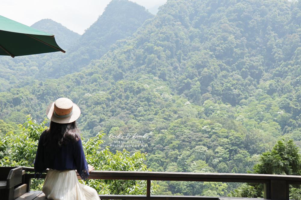 苗栗南庄景觀餐廳山行玫瑰21.jpg