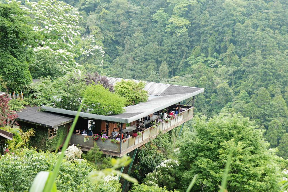 苗栗南庄景觀餐廳山行玫瑰30.jpg