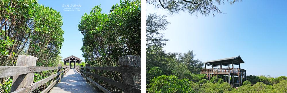 新竹新豐紅樹林00.jpg