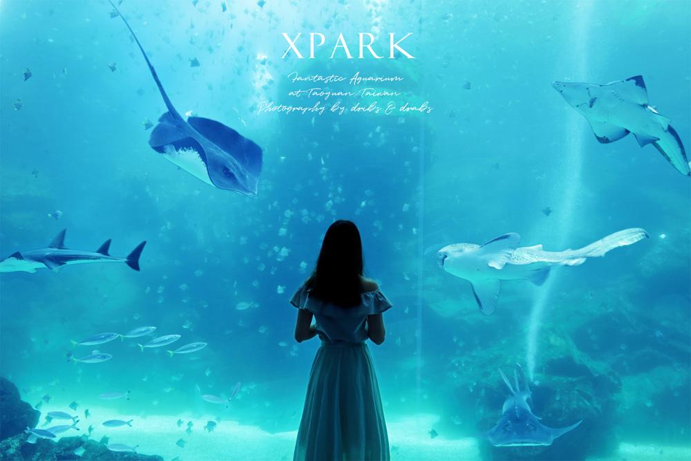 桃園XPARK水族館01.jpg