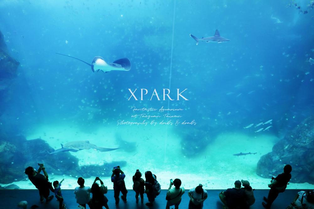 桃園XPARK水族館05.jpg
