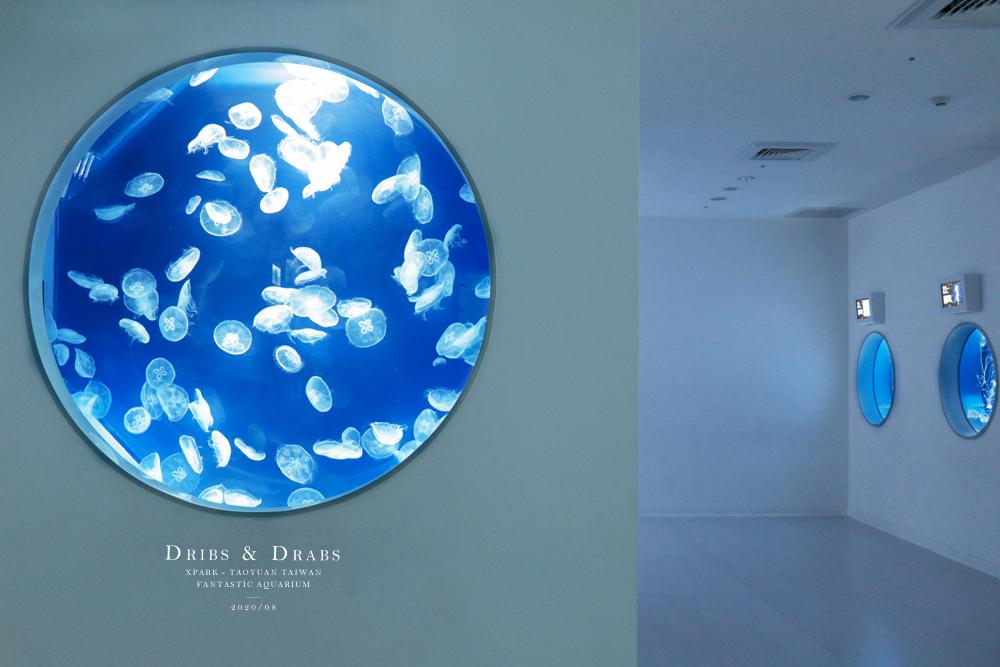 桃園XPARK水族館12.jpg