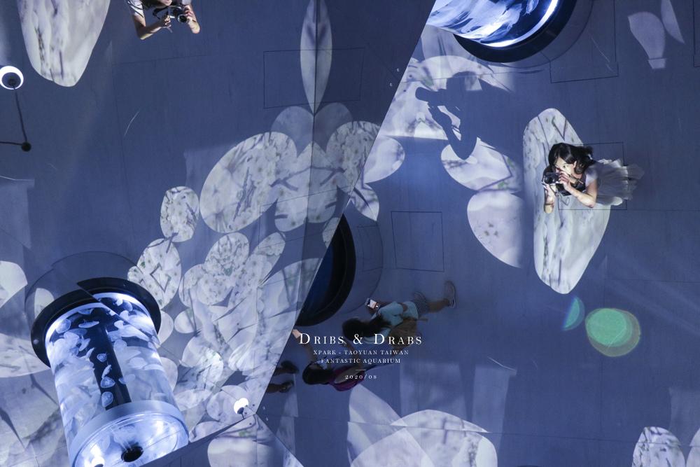 桃園XPARK水族館17.jpg