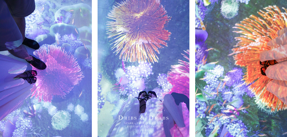 桃園XPARK水族館22.jpg