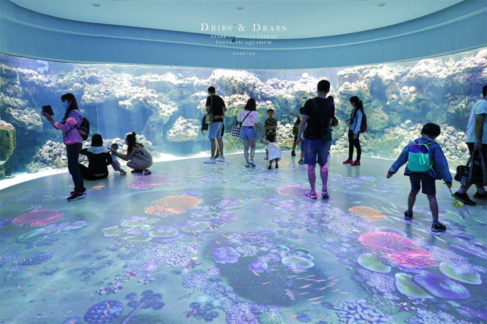 桃園XPARK水族館20.jpg