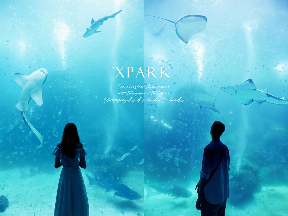 桃園XPARK水族館31.jpg