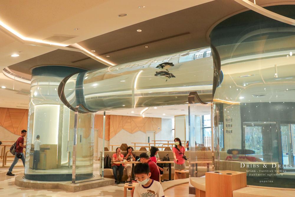 桃園XPARK水族館29.jpg