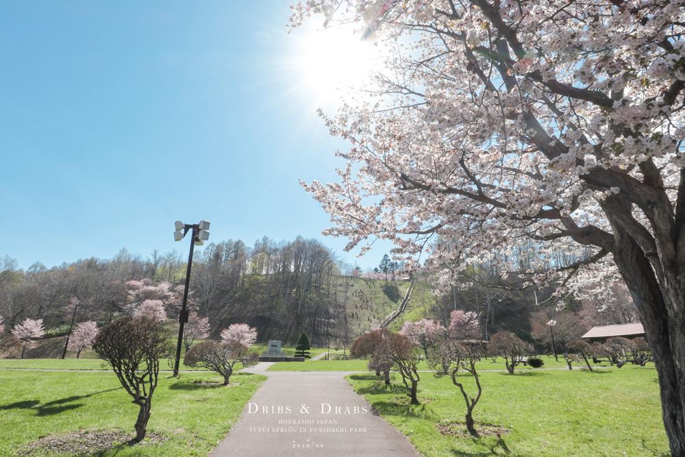 北海道羊蹄山名水公園湧泉01.jpg