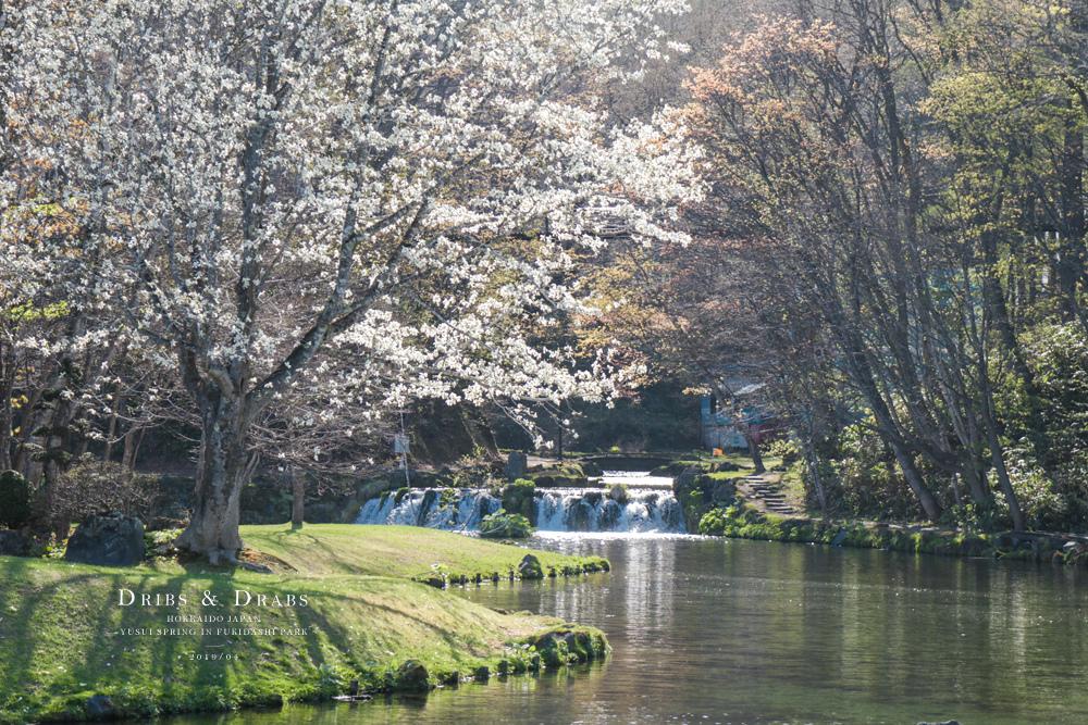 北海道羊蹄山名水公園湧泉36.jpg