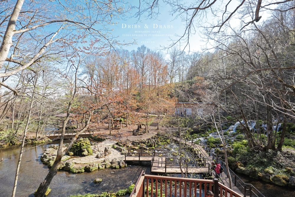 北海道羊蹄山名水公園湧泉18.jpg