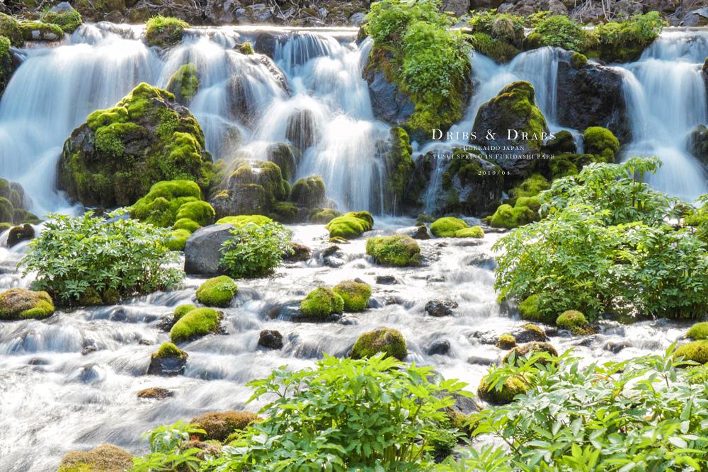 北海道羊蹄山名水公園湧泉22.jpg
