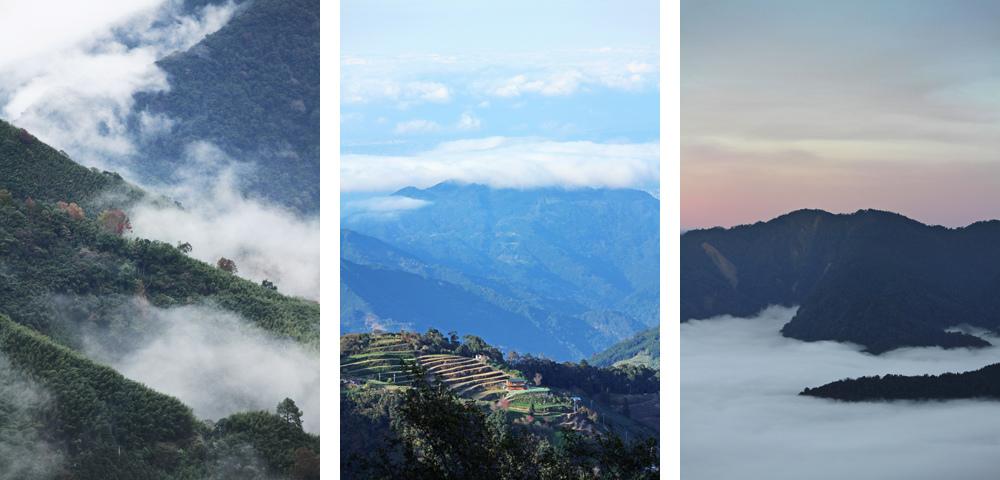 新竹觀霧雲海