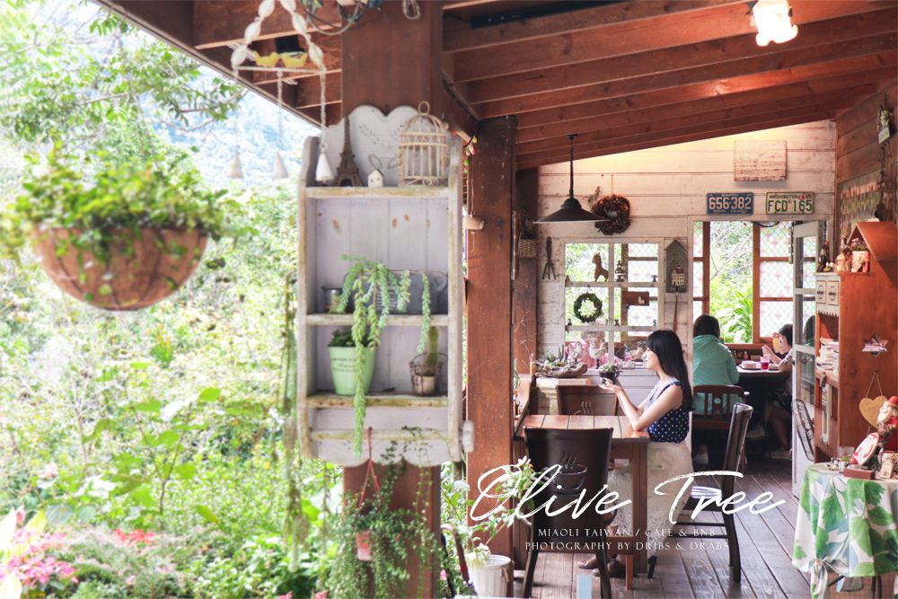 苗栗南庄橄欖樹咖啡民宿