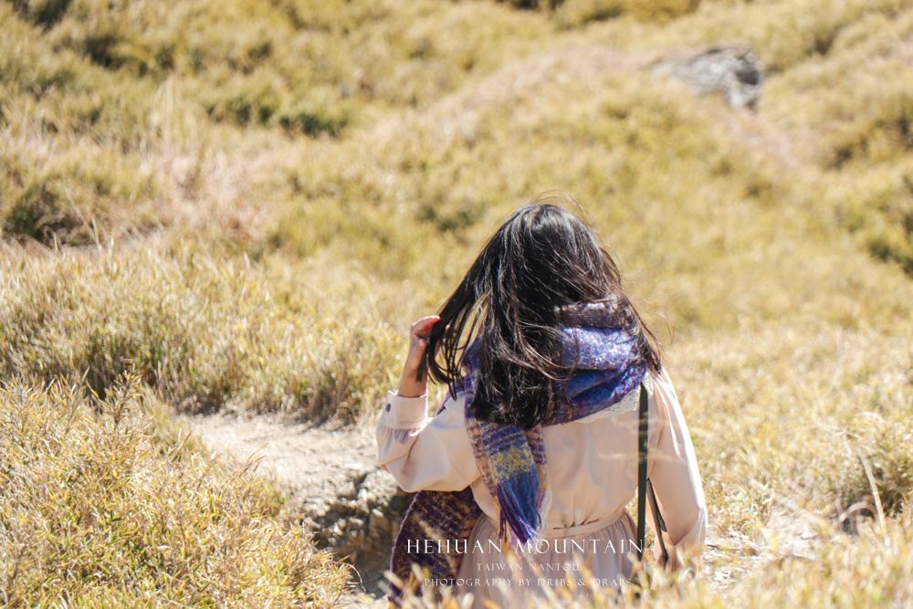 小奇萊草原小奇萊步道合歡山風景27.jpg