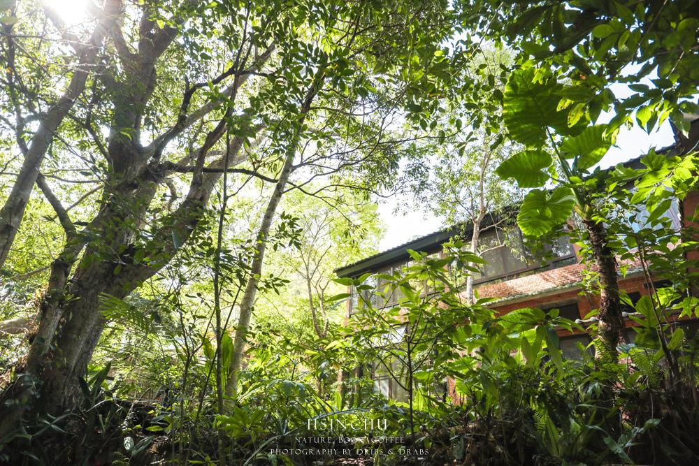 新竹尖石秘境自然在家書坊08.jpg