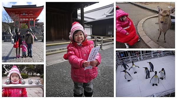 2012日本冬之旅組合圖1