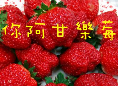7899_副本