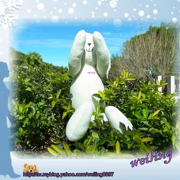 rabbit(3).jpg