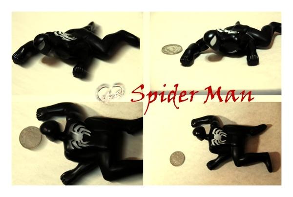 spider2-big.jpg
