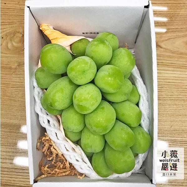 日本麝香葡萄.jpg