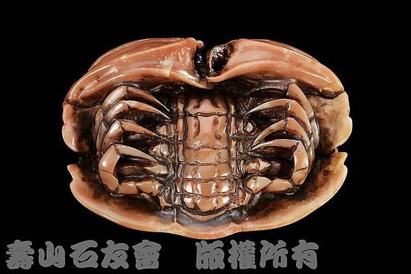 C0257k_壽山石_善伯_饅頭蟹(莊南鵬)