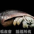 C0368_壽山石_仙遊_寄居蟹(林樹岳)