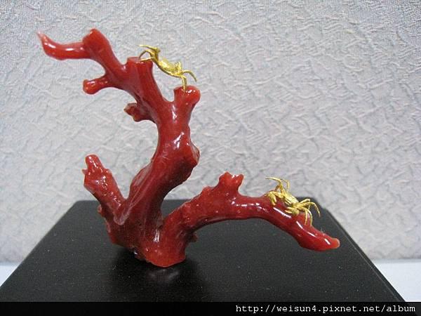 C0700_金雕_珊瑚上的螃蟹(吳卿)