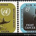 C1-39_C1329_防癌