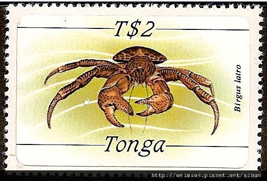 40-05_C1328_椰子蟹