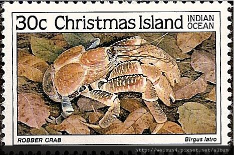 40-06_C0172-11_椰子蟹