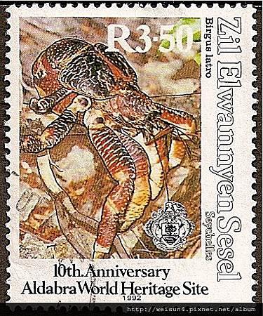 40-12_C1314_椰子蟹