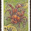 40-15_C0115-06_椰子蟹
