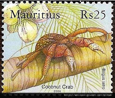 40-20_C1023-04_椰子蟹