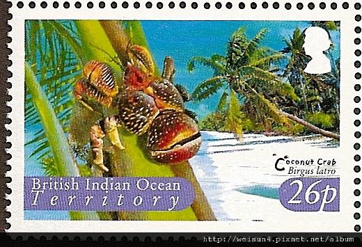 40-19_C0510-04_椰子蟹