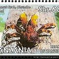40-21_C1432_椰子蟹