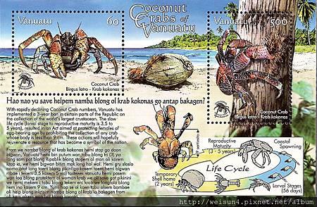 40-26_C1155_椰子蟹
