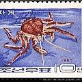 41-10_C0140-04_石蟹科_堪察加擬石蟹