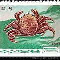 07-02_C0140-01_近圓蟹科_伊氏毛甲蟹