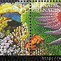 09-09_C1231_瓢蟹科_珊瑚瓢蟹