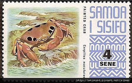 09-16_C0741_瓢蟹科_紅斑瓢蟹