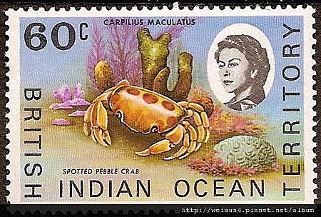 09-15_C1230_瓢蟹科_紅斑瓢蟹