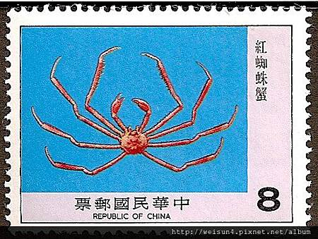 18-08_C0109-03_尖頭蟹科_阿氏扁蛛蟹