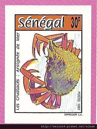 19-05_C0662-01_蜘蛛蟹科_合團蜘蛛蟹