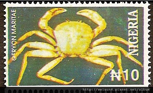 24-02_C0122_b2_怪蟹科_海洋查氏蟹