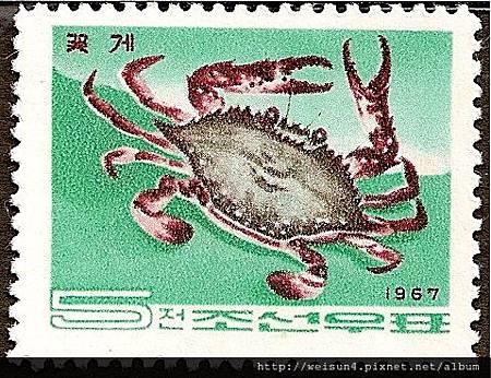 25-55_C0140-03_梭子蟹科_三疣梭子蟹