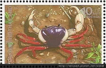 26-03_C0124-03_溪蟹科_瑟皇后泰腹蟹