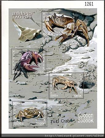 32-19_C1014_地蟹科_圓軸蟹屬