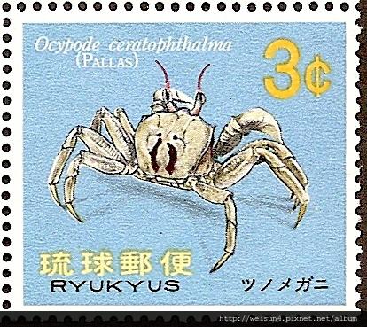 38-01_C0136-04_沙蟹科_角眼沙蟹